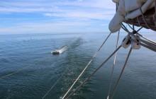 The-Ocean-Mapping-Expedition Programme-Micromégas Prélèvement-microplastique 0 Crédit-Fondation-Pacifique-copie