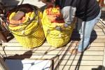 Ces-nouvelles-amarres-serviront-a-stabiliser-le-bateau-au-mouillage